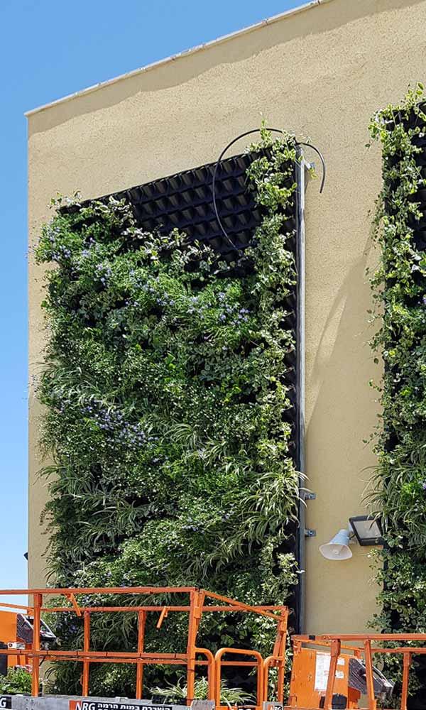 montaz-Pixel-Garden
