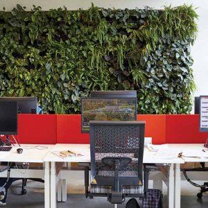 pixel garden interiér